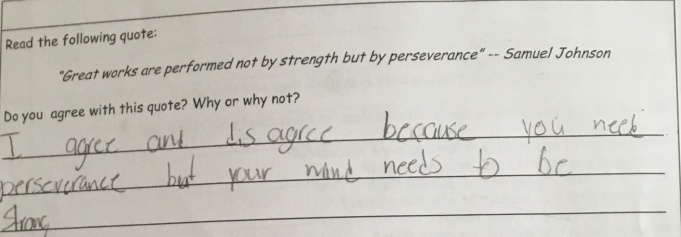 Students reflected on their own ideas about persistence prior to learning about it formally.