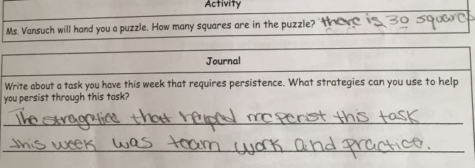 Students reflected after doing a persistence puzzle about what strategies help them.