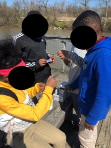 Students investigating water quality.
